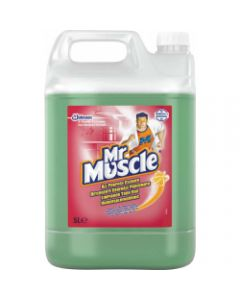 Mr Muscle All Purpose Cleaner 5L